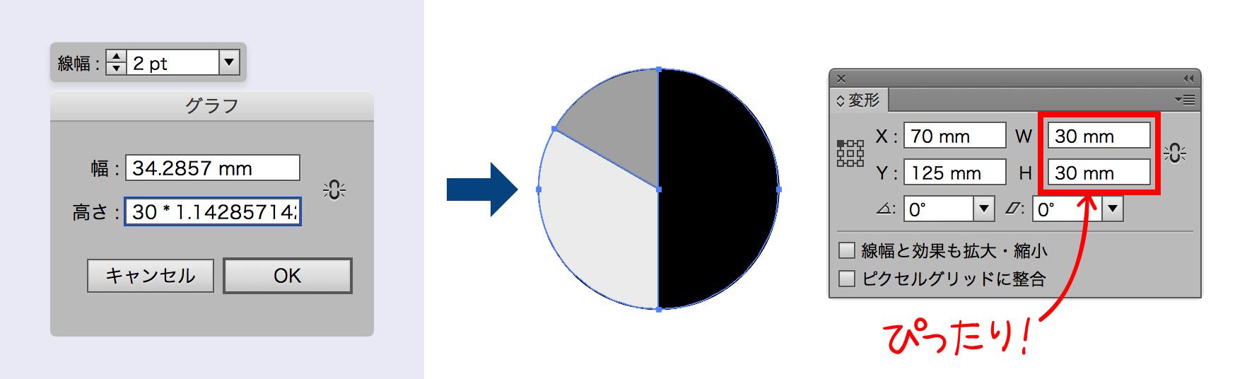 図版 円グラフ 線幅2ptでサイズ指定し,拡大率をかけたとき