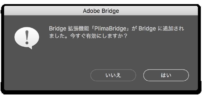 Bridgeスクリプトを有効にする 画像